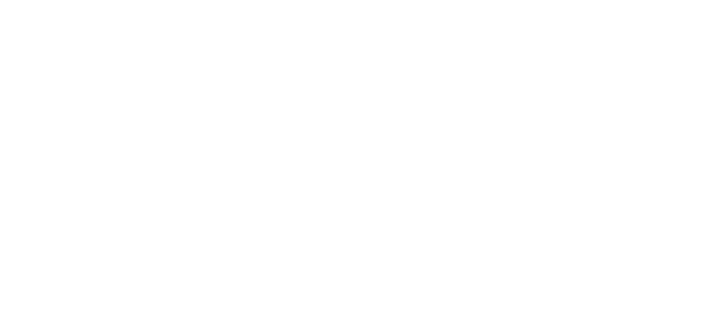 AshFiMon Horizontal White Logo